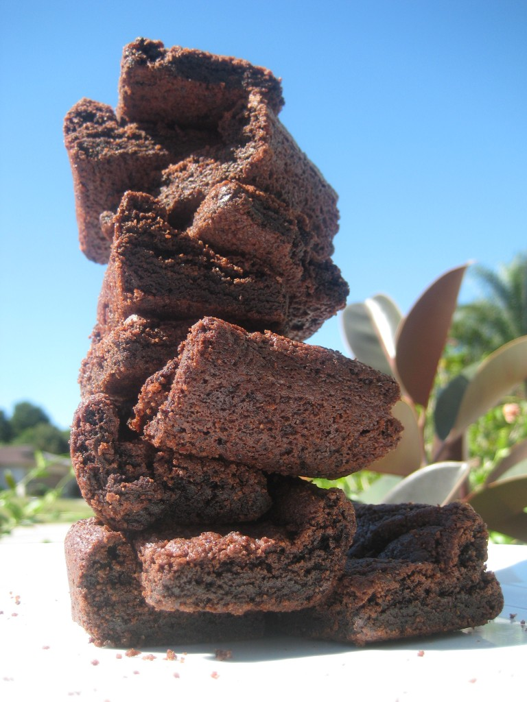 stack of brownies made in search of the chewiest brownie