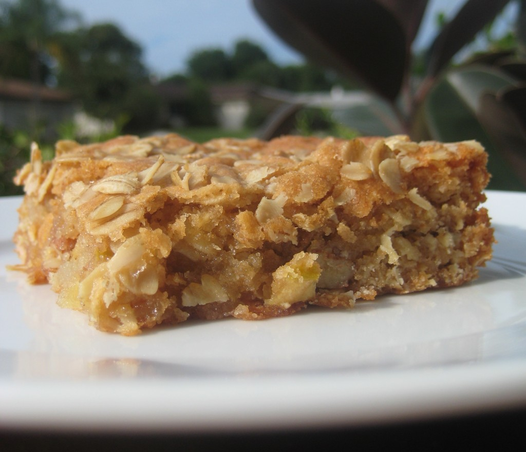 Oatmeal blondie illustrates an oatmeal blondies recipe