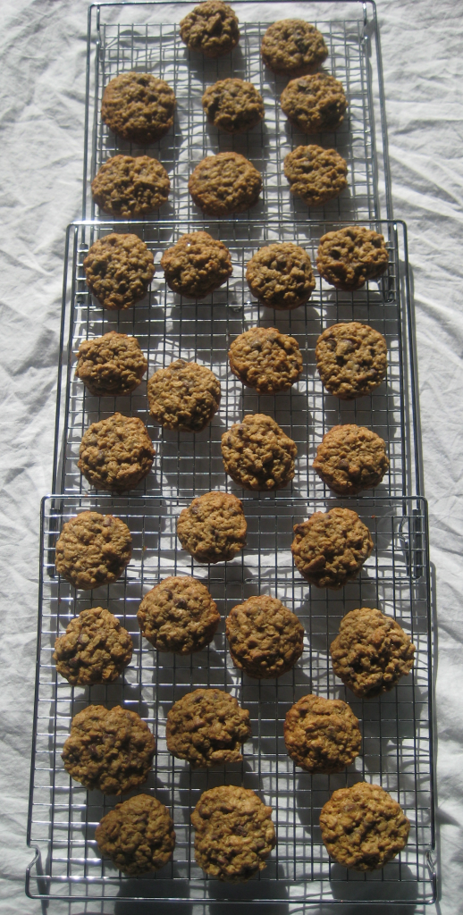 Oatmeal Chocolate Chip Pecan Cookies Recipe