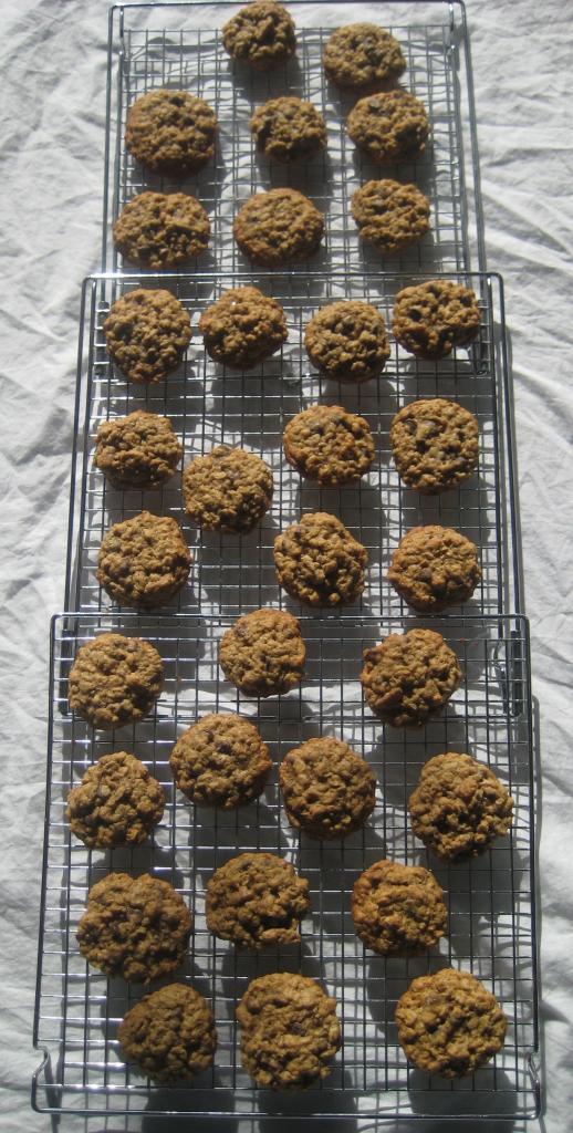 Oatmeal Chocolate Chip Pecan Cookies Recipe
