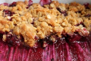 Blackberry crumble horizontal closeup SQUARE