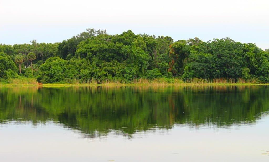 Lake View Audubon Center for Birds of Prey