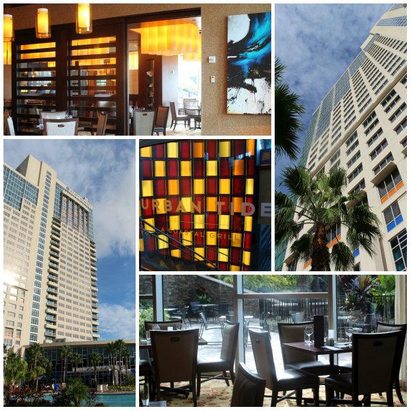Urban Tide Orlando Seafood Restaurant Hyatt Regency