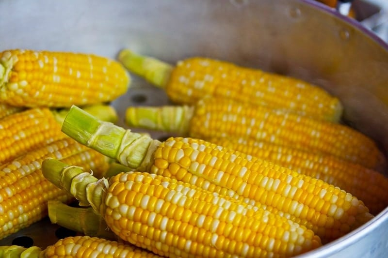 From corn to watermelon, and from alligator to tilapia, I love the amazing variety of Fresh from Florida produce. Find out what's in season when!