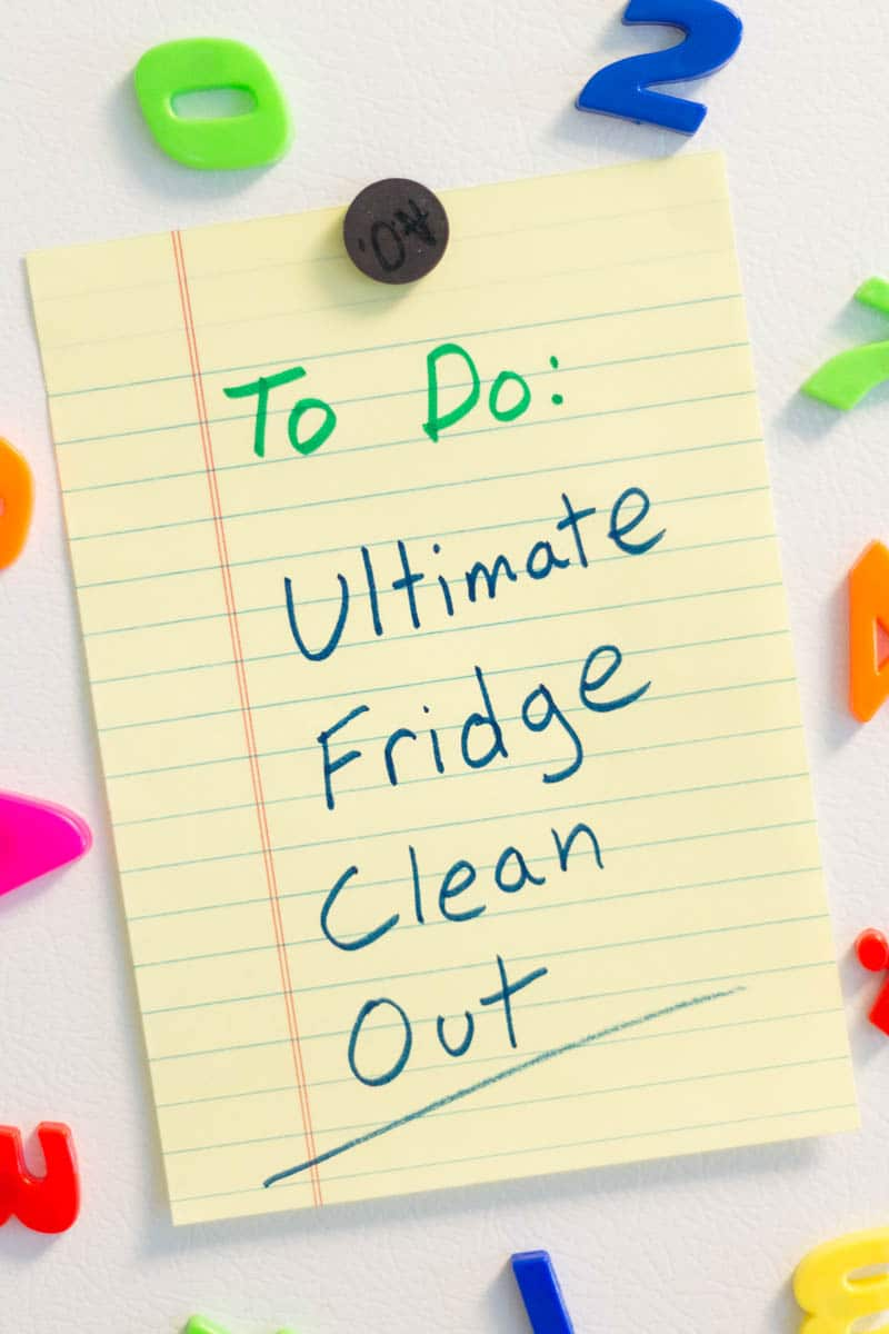 Are you ready for your fridge to sparkle and shine? Clean out your fridge, and you'll be proud to open your refrigerator door.