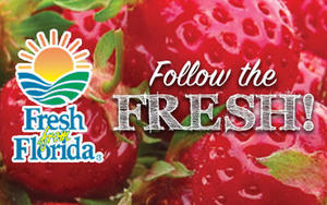 Florida's winter produce is full of fresh, delicious choices! From tomatoes, blueberries, and peppers, to seafood and more, the Sunshine State has it all.