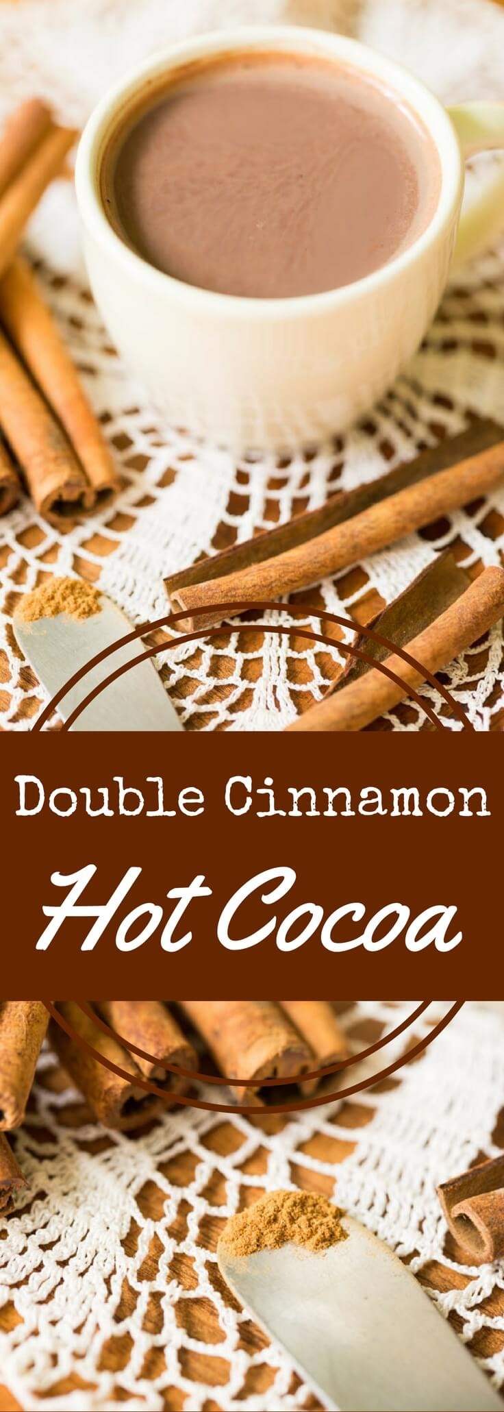 Two kinds of cinnamon plus cocoa equals the best cinnamon hot chocolate (or cinnamon hot cocoa) you've ever had. Rich, complex, and satisfying.